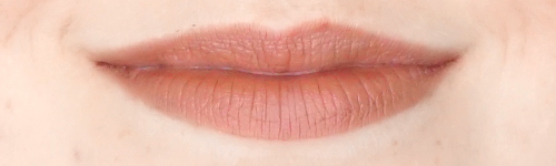 Rouge-Dior-Ultra-Rouge-325-ultra-tender-review-swatch