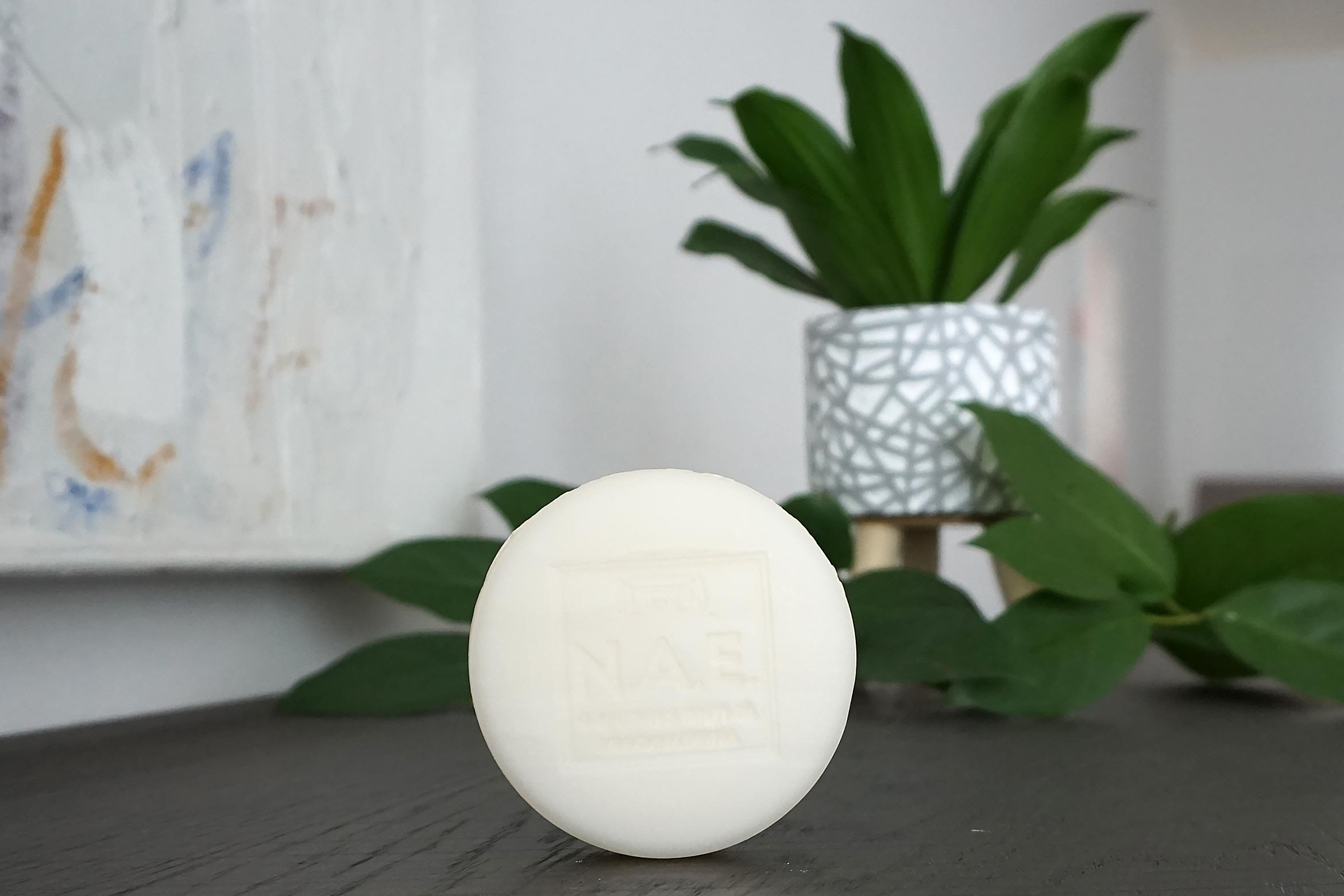n.a.e. semplicita shampoo bar review-1