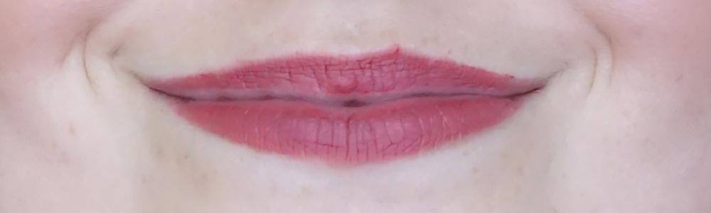 max & more lipstick matt swatch 327 rusty rose review-4