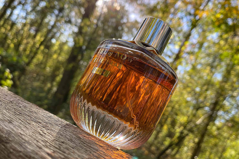 elie saab girl of now shine eau de parfum review-2