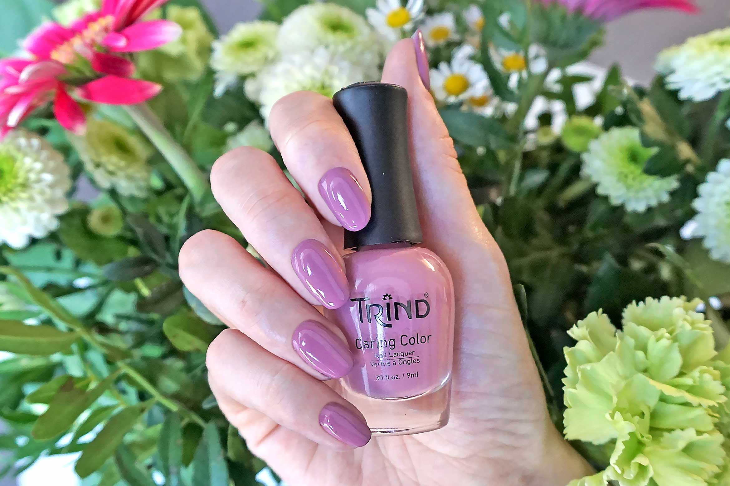 trind comfort zone swatch back to basics collectie