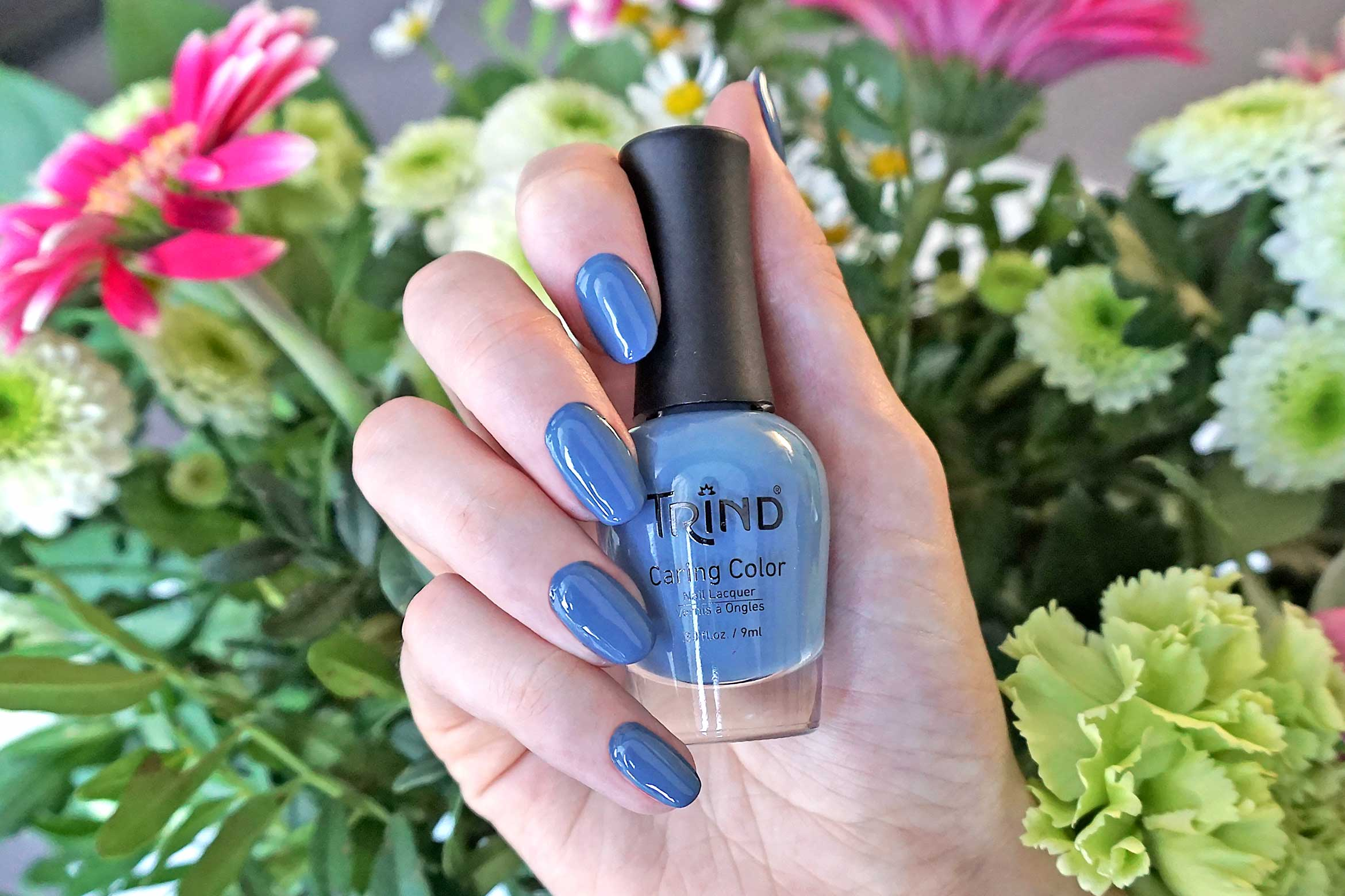trind trust the magic swatch back to basics collectie