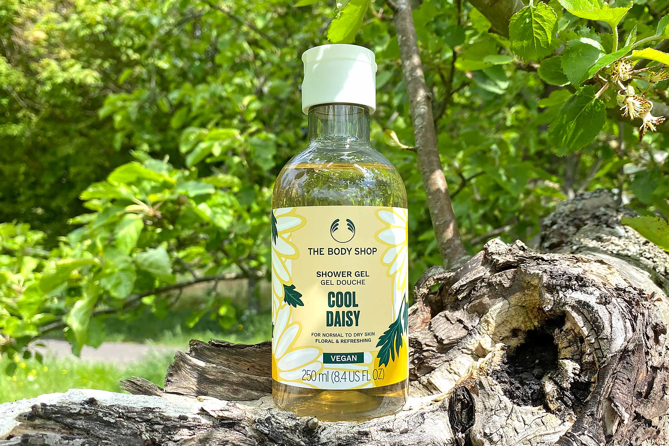 the body shop cool daisy shower gel review