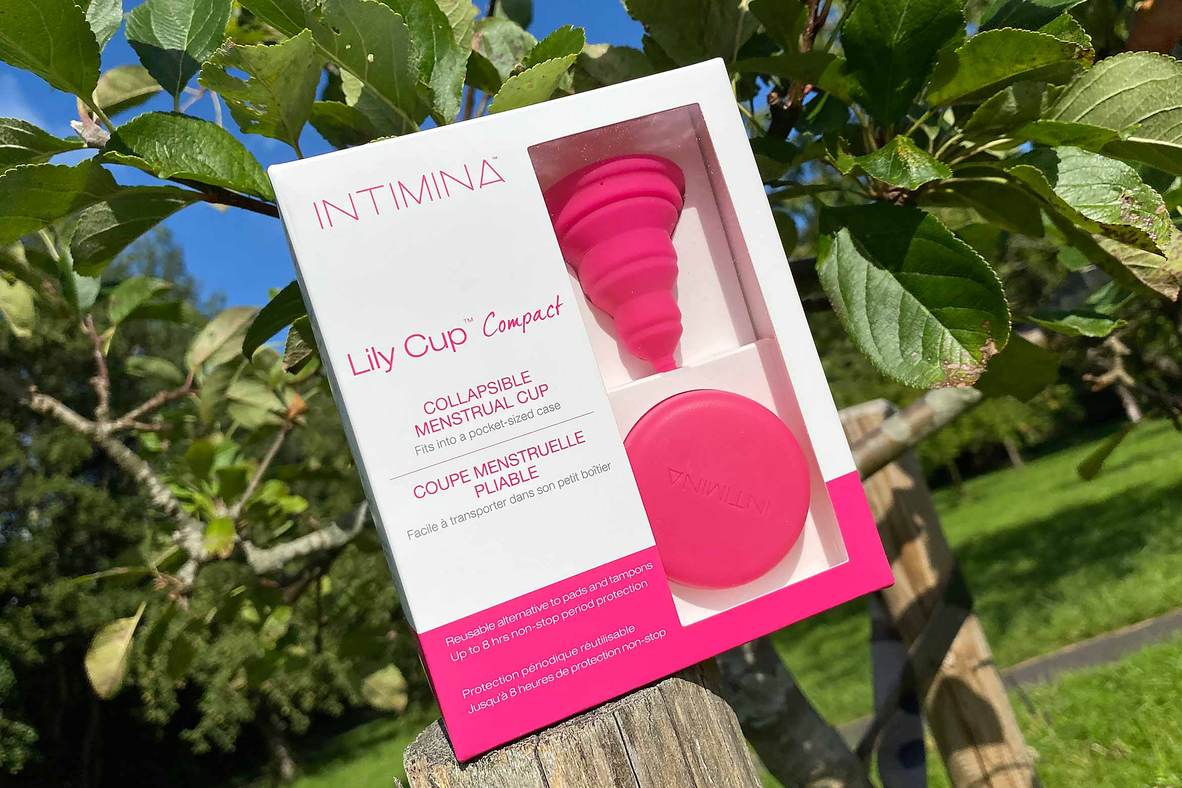 intimina lily cup compact